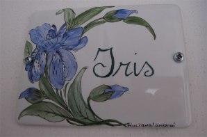 Iris-1